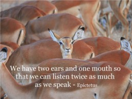 Active Listening Highly Effective Communication